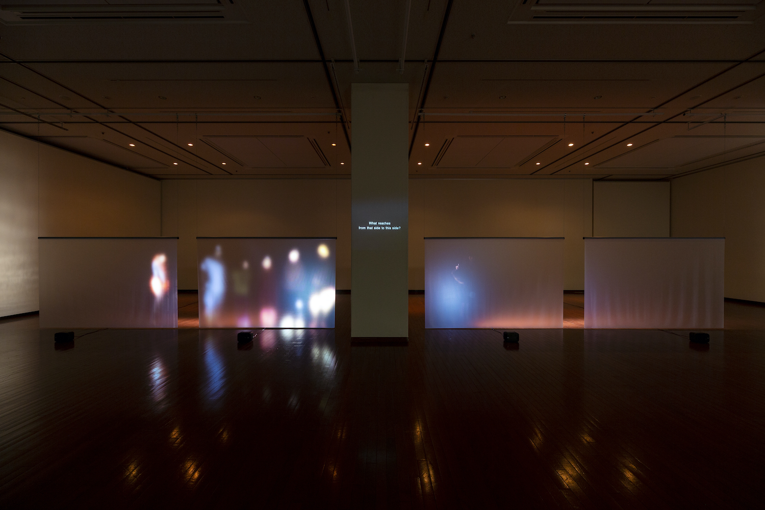 chelfitsch's Eizo-Theater The Landscape, the World, and Accidents:  Everything That Happens Outside of This Room image 2